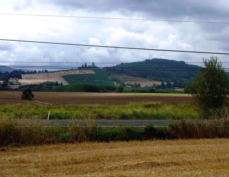 Portland, OR - Landscape 2