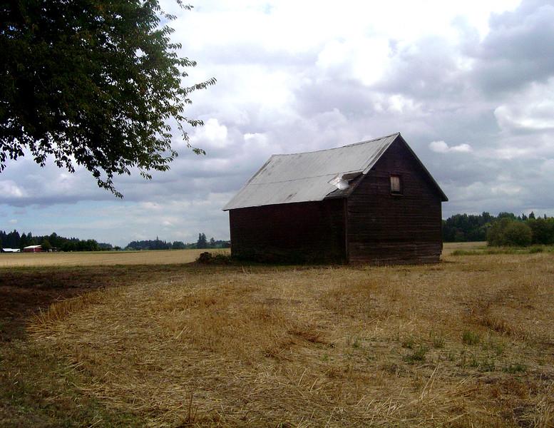 Portland, OR - Abandoned Shed - Color