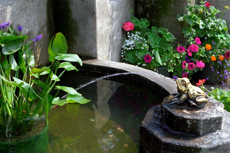 Victoria, B C  - Frog Fountain