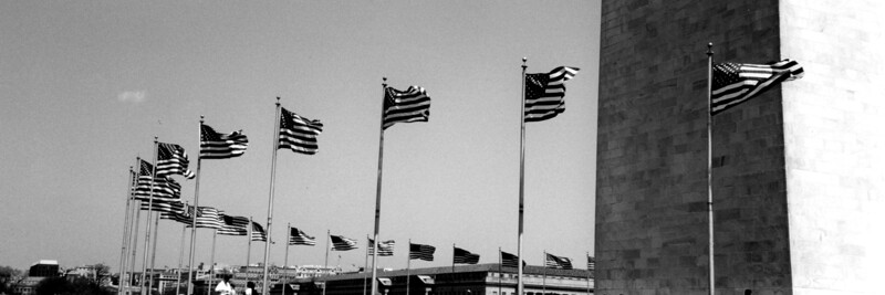 Washington, D C  - American Flags - panoramic