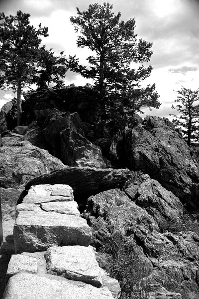 Colorado - Rocky Mountain National Park bw