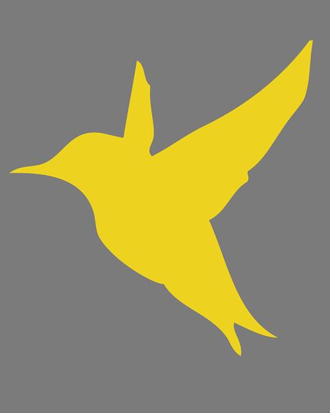 birdB3