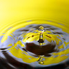water_drop_H3P8828 (Splash III)
