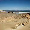 Drakes Beach_J2A3614
