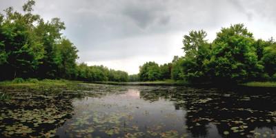 Runaround Pond, Durham