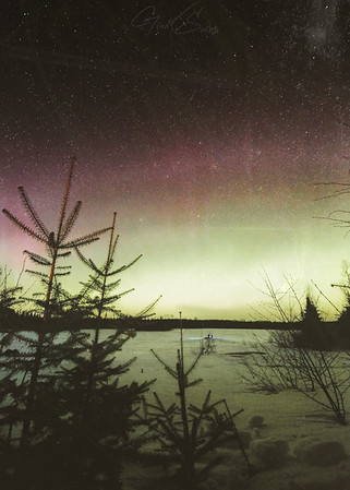 Northern Lights - Dusty - Print