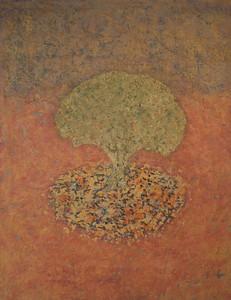 Life of a Tree: Alentejo II: Tree, Day