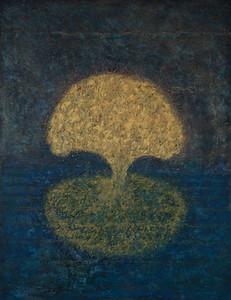 Life of a Tree: Alentejo II: Tree, Night
