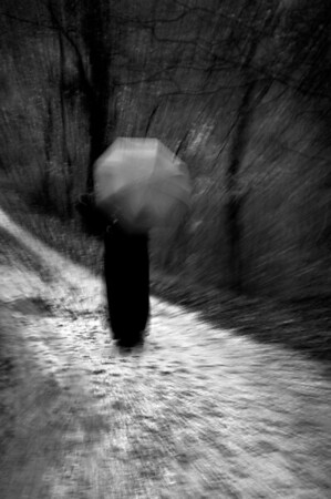 Woman with Umbrella: In the Woods