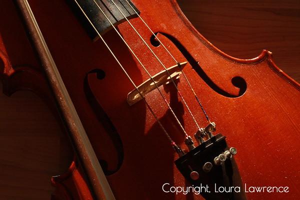 Viola Bridge, Strings, F-Holes, and Bow; Closeup