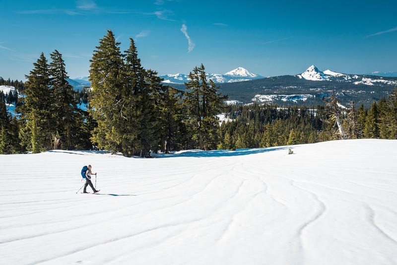 Stroll on the Snow