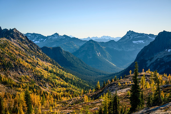 Valley of Larches