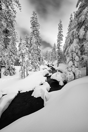Paulina Creek Powder