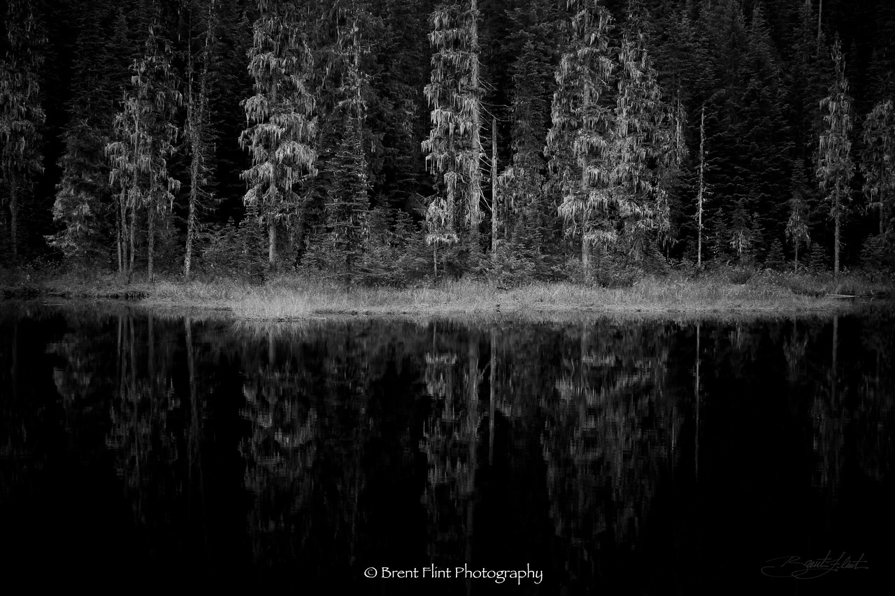 DF.586 - Huff Lake, Kaniksu National Forest, WA.
