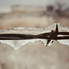 Ice on Barbed Wire Fence