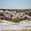 Palo Duro in Snow 1
