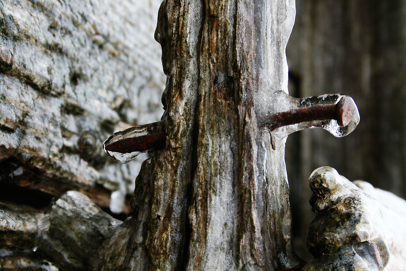 Ice and Rust on Wood
