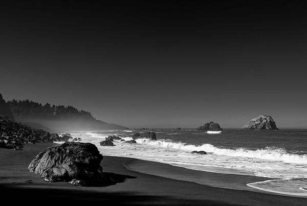 Where the Fog Meets the Sea