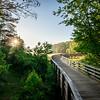 Spring 2017, Panola Mountain State Park, Sunrise