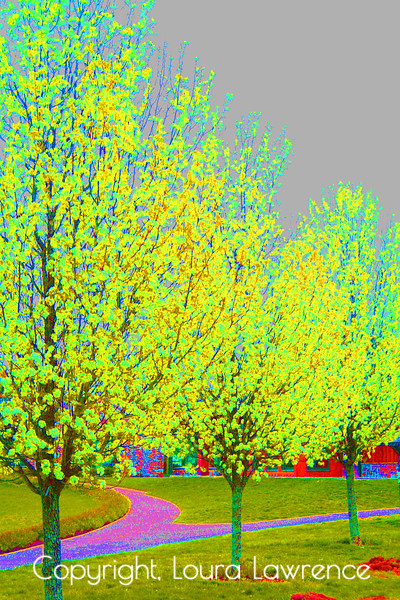 Bright Yellow Expressionistic Pear Trees in Spring Digital Fine Art Photography by Loura Lawrence