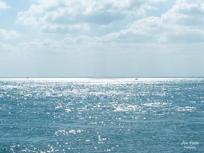 """Cape Florida Beach"""