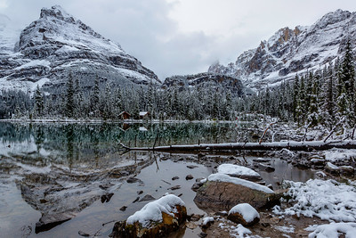 Early Winter at Lake O'Hara