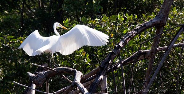 Juan Venado Nature Reserve, Nicaragua
