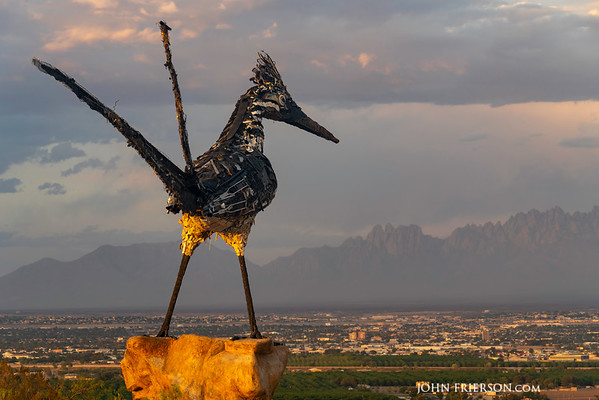 Recycled Roadrunner Keeping Watch over Las Cruces, NM