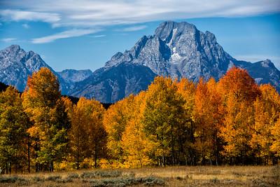 Fall at Grand Tetons National Park