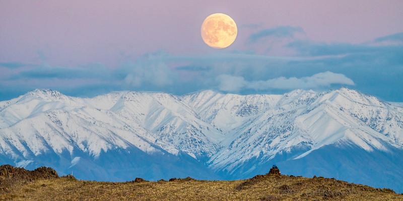 Moonrise in Mongolia, Panoramic Crop