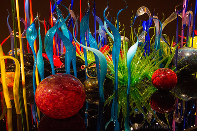 Chihuly Glass Exhibition, Seattle