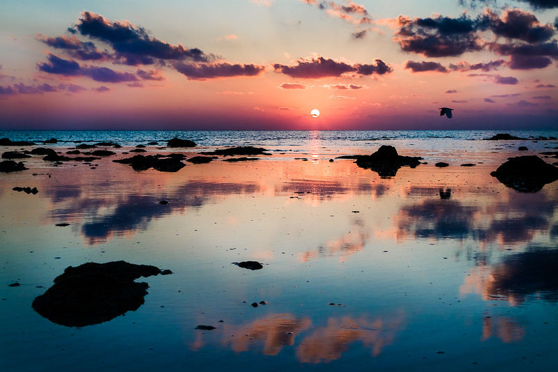 BEACH #5 SUNRISE 2