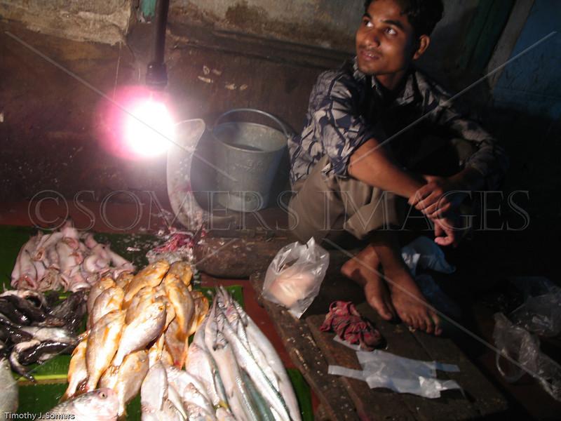 Fish walla, Kolkata