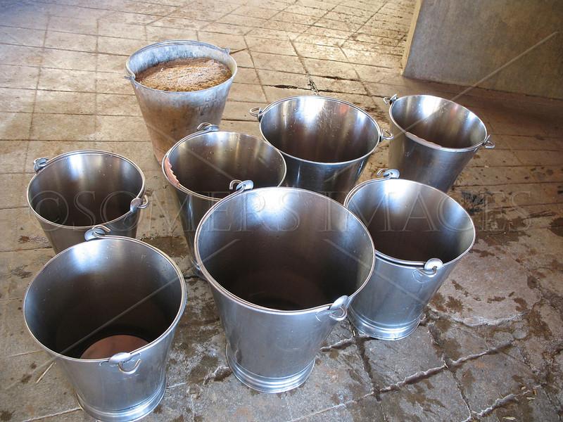 Milk Pails, India