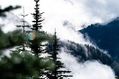 Trans Cascadia
