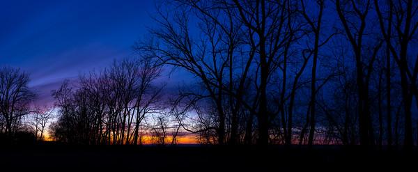 Winter Sky - Panorama