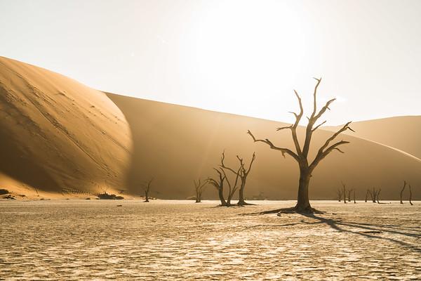 Sossusvlei Dead Vlei, Namibia 2017