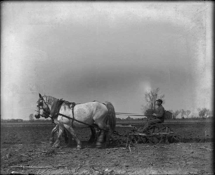"""Moving Picture Plowing"" taken by James T. Somers, great grandfather of photographer Tim Somers. This image was captured with a 4""x5"" wooden view camera and glass plate negatives.Two draft horses pulling a man seated on a plow."