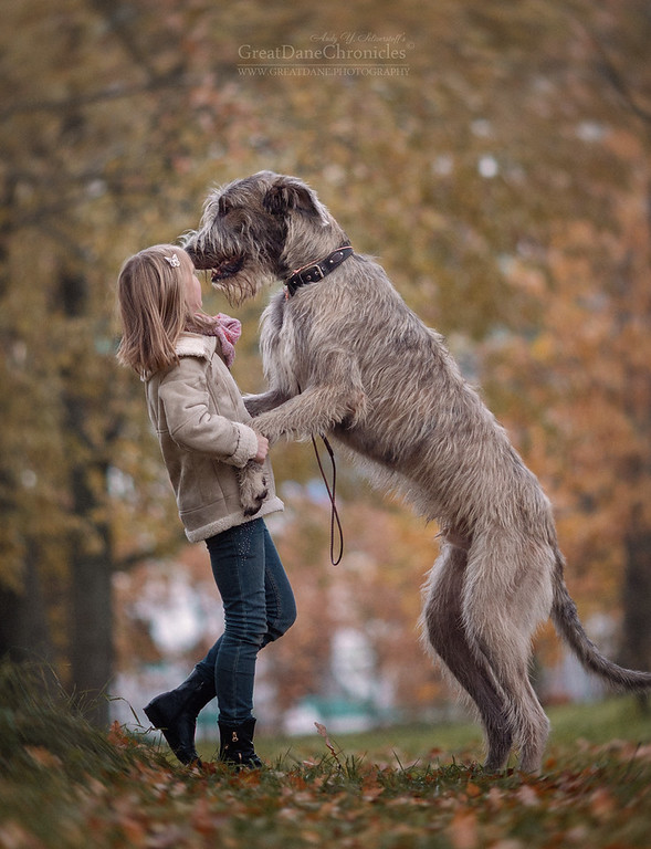 https://photos.smugmug.com/Prints/Little-Kids-and-their-Big-Dogs/i-2NwvtJx/0/XL/GDC_4355GDCh-XL.jpg