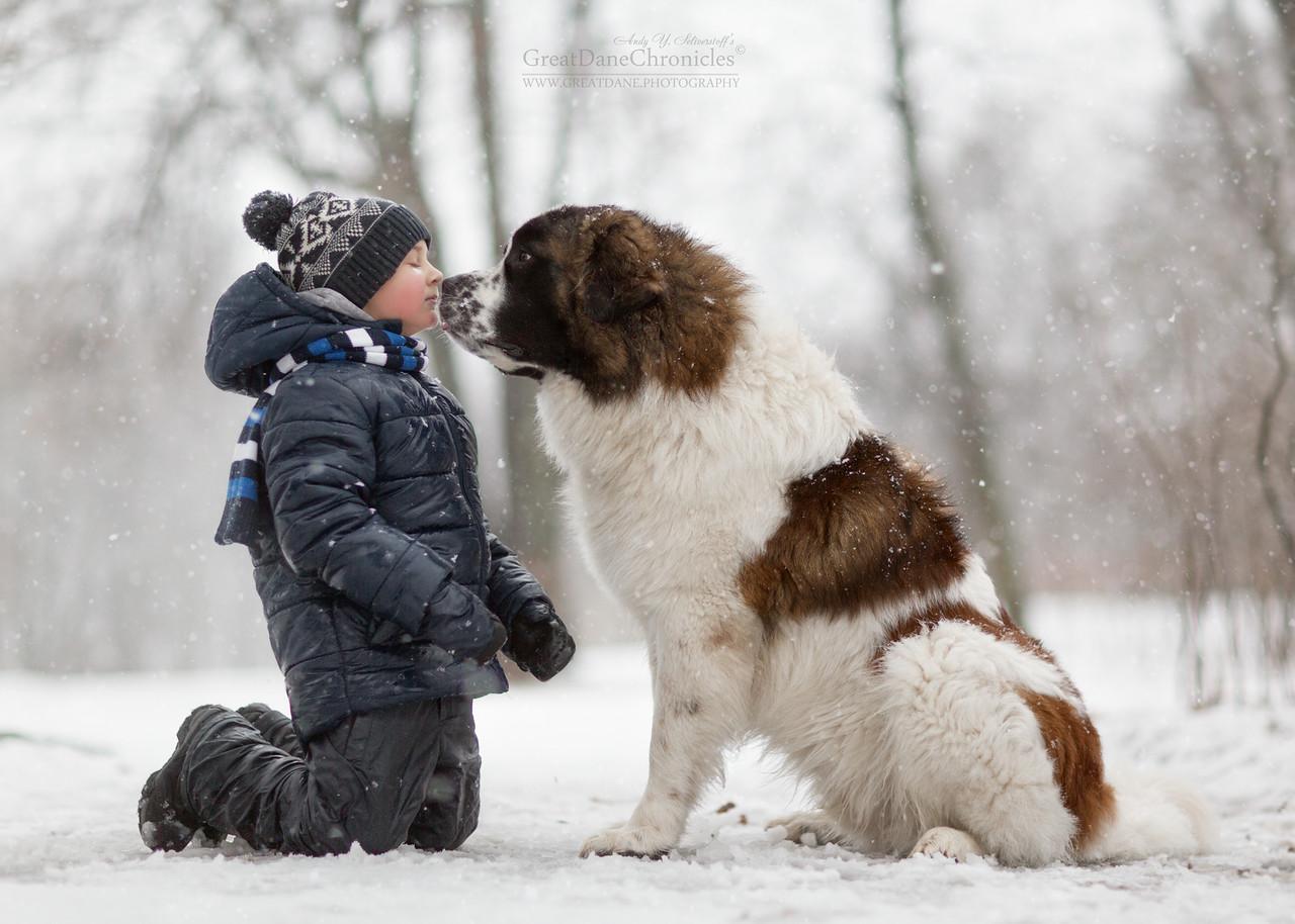 Aprócska gyerekek óriási kutyusokkal - lehetetlen nekik ellenállni
