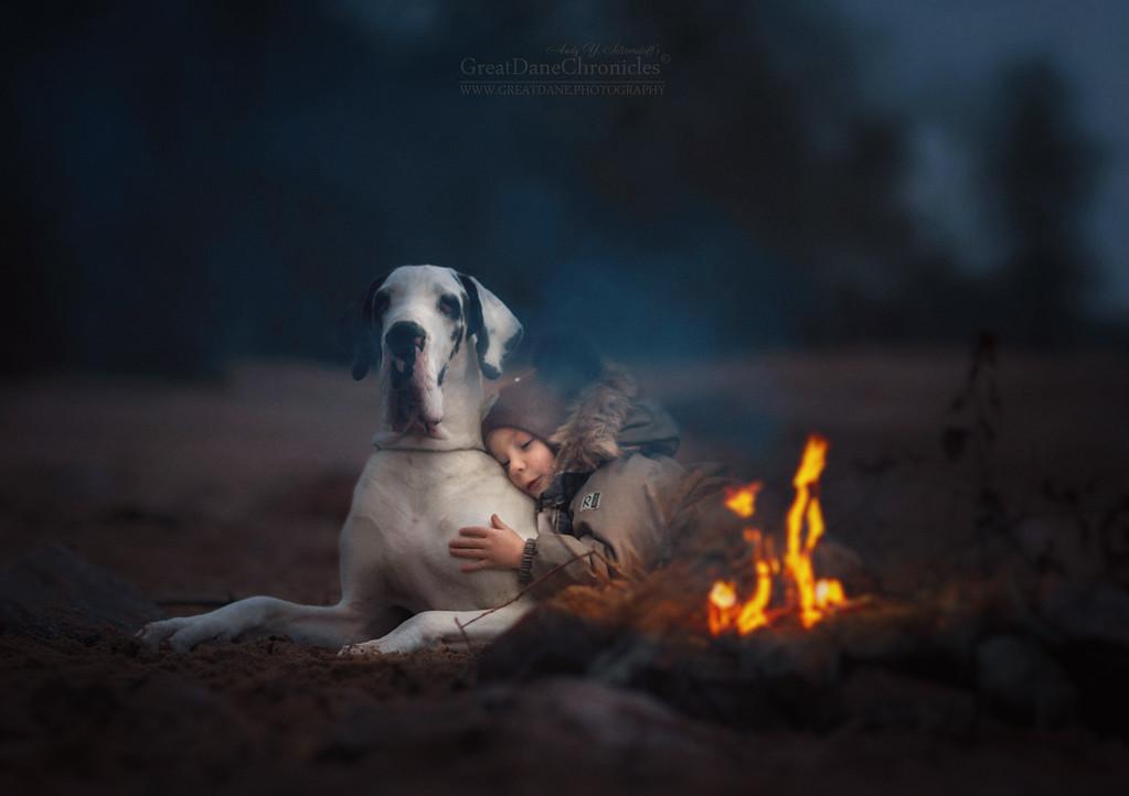 https://photos.smugmug.com/Prints/Little-Kids-and-their-Big-Dogs/i-BZpt3Hz/0/XL/GDC_9549GDCh-XL.jpg