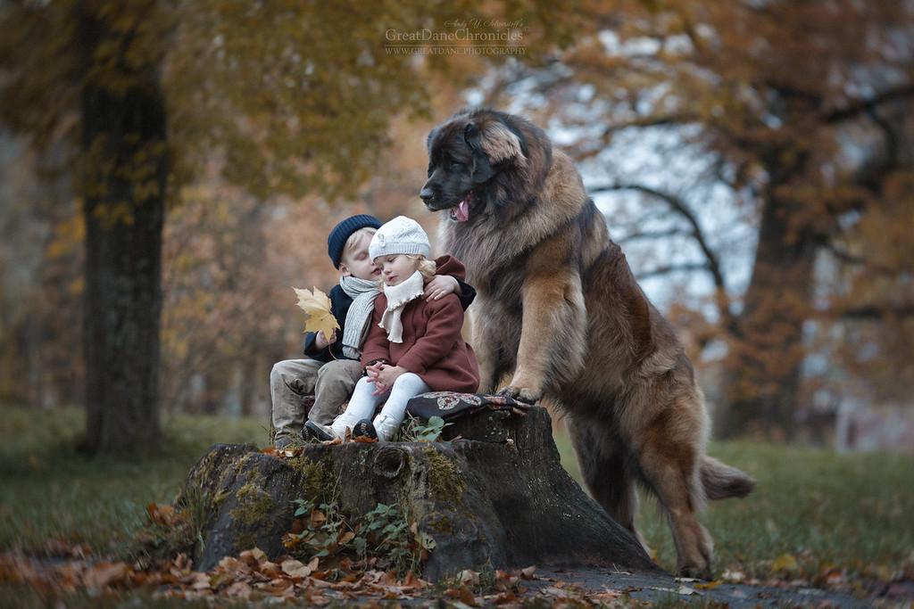 https://photos.smugmug.com/Prints/Little-Kids-and-their-Big-Dogs/i-CrZSczN/0/XL/GDC_5922GDCh-XL.jpg