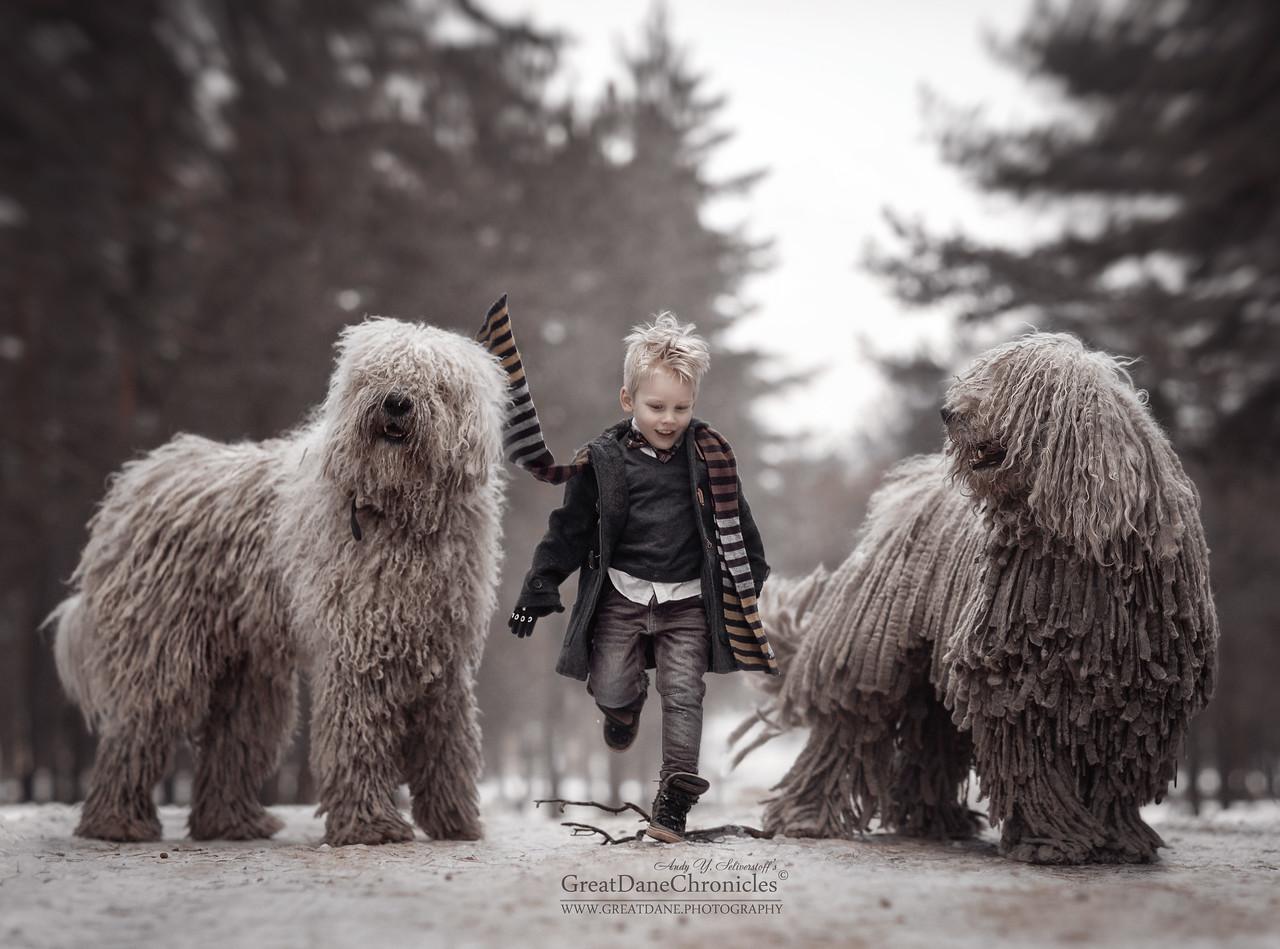 https://photos.smugmug.com/Prints/Little-Kids-and-their-Big-Dogs/i-DX4h3rw/0/a7eaad54/X2/GDC41975SSGDch-X2.jpg