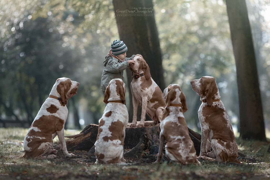 https://photos.smugmug.com/Prints/Little-Kids-and-their-Big-Dogs/i-HRGRBvC/0/XL/GDC_9244GDCh-XL.jpg