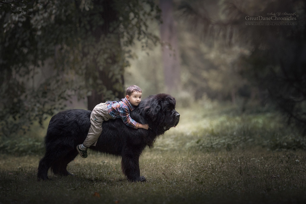 https://photos.smugmug.com/Prints/Little-Kids-and-their-Big-Dogs/i-KPghcFr/0/XL/GDC_8249GDCh-XL.jpg