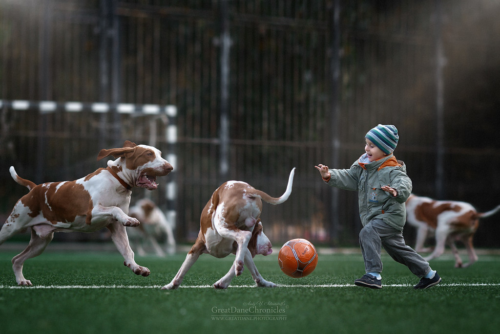https://photos.smugmug.com/Prints/Little-Kids-and-their-Big-Dogs/i-LQPQJQN/0/XL/GDC_8770GDCh-XL.jpg
