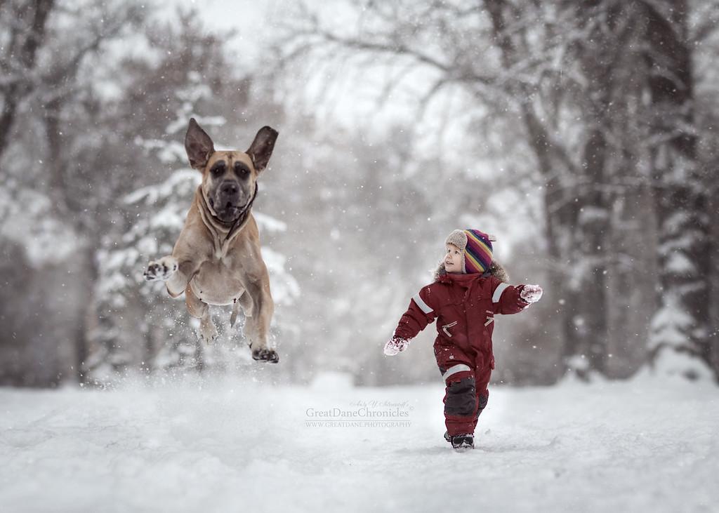 https://photos.smugmug.com/Prints/Little-Kids-and-their-Big-Dogs/i-NLD962m/0/XL/GDC_4652GDCh-XL.jpg