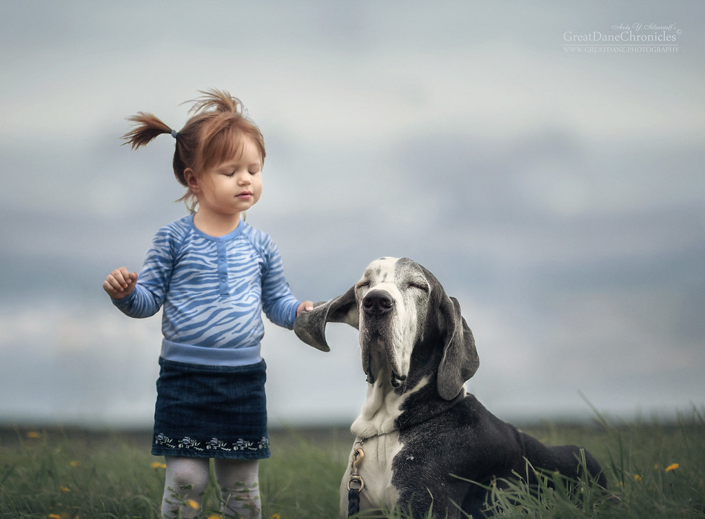 https://photos.smugmug.com/Prints/Little-Kids-and-their-Big-Dogs/i-RGBhSGh/0/XL/GDC_9036GDCh-XL.jpg