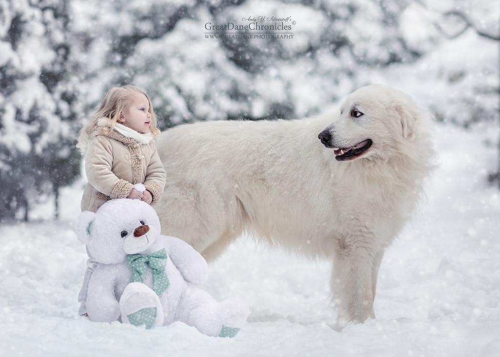 https://photos.smugmug.com/Prints/Little-Kids-and-their-Big-Dogs/i-XNGX86D/0/XL/GDC_3837GDCh-XL.jpg
