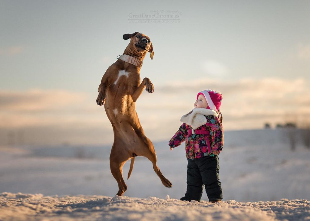 https://photos.smugmug.com/Prints/Little-Kids-and-their-Big-Dogs/i-dc2xv9W/0/XL/GDC41649GDCh-XL.jpg